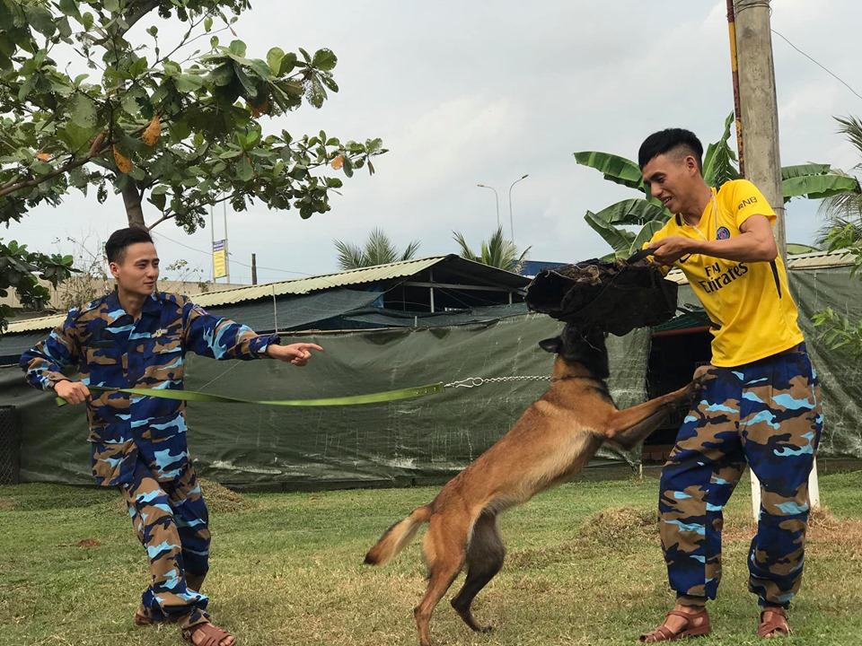 Toàn Phát - trung tâm huấn luyện chó Bình Phước uy tín