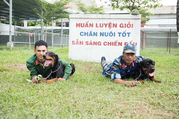 Huấn luyện chó Bà Rịa Vũng Tàu chuyên nghiệp tại Toàn Phát